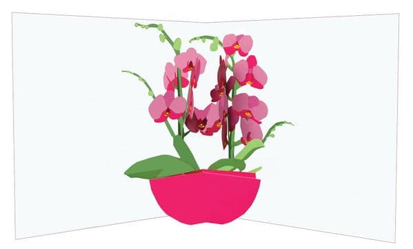 Flower Vases: Orchids