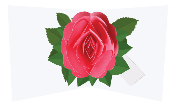 Simply a Rose: Pink