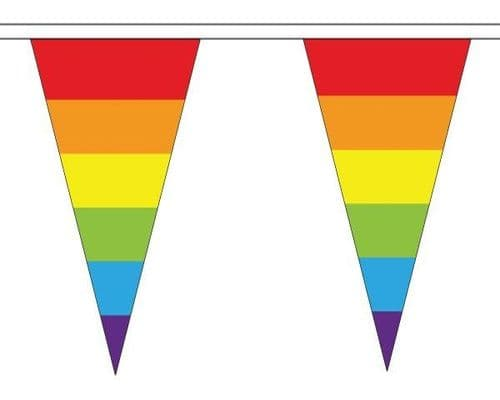 Rainbow Triangle Bunting (5m) - 12 Flags