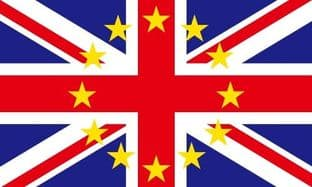 Britain in Europe 5ft x 3ft Flag