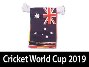 Cricket World Cup Bunting (6m)