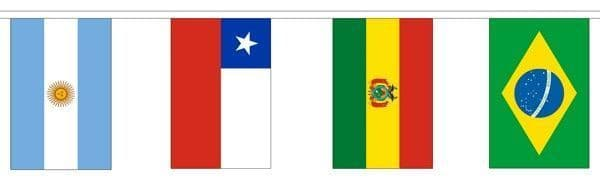 South America Country Mixed Bunting (5m) - 12 Flags