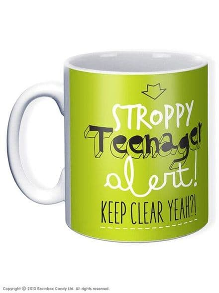 """Stroppy Teenager Alert"" Funny Novelty Mug"