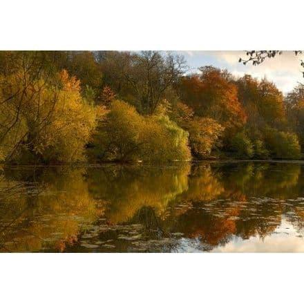 Autumn Leaves - Cotswold 1000 Piece Puzzle