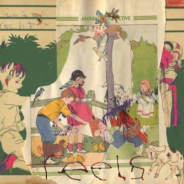Animal Collective<br>Feels