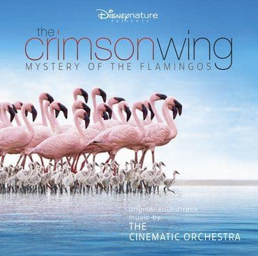 Cinematic Orchestra<br>The Crimson Wing - Mystery of The Flamingoes (RSD 2020)