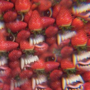 Thee Oh Sees<br>Floating Coffin (LRS 2021)
