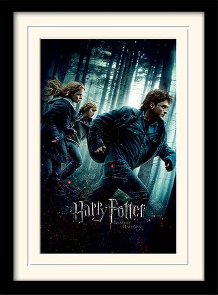 HARRY POTTER - DEATHLY HALLOWS PART 1 MP10688P